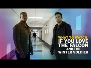 """What to Watch If You Love """"The Falcon and the Winter Soldier"""""""