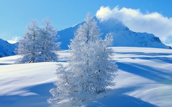 Обои На Рабочий Экран Зима