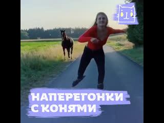 Девушка катается наперегонки с конями