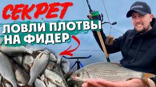 Как поймать много плотвы на фидер. Рыбалка на Фидер 2021. Весенний ход плотвы.