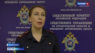 Житель Ненецкого округа пытался поленом убить восьмилетнего мальчика за потерю мобильника