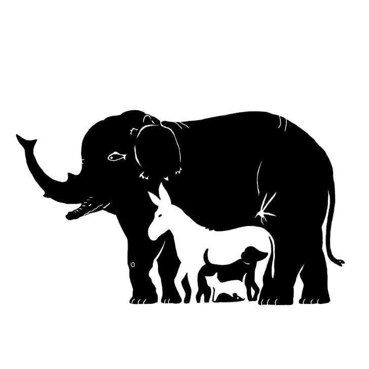 Сколько вы здесь видите животных ?