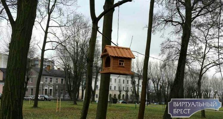 В Городском саду Бреста повесили кормушки для птиц. Они вам точно понравятся