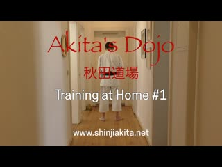 МБИ 207 | Практика | Karate Fitness, Training at Home  (Akita's Karate Video)