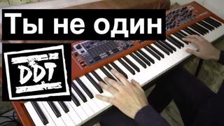 ДДТ - Ты не один | Кавер на фортепиано | Евгений Алексеев | DDT Юрий Шевчук