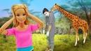 Видео про куклу Барби! Какие Животные в Зоопарке встретятся Барби Игры для девочек