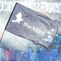 Логотип Фан-клуб группы Чёрная птица