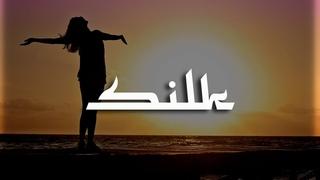 Jay Leemo - Улетай Dj Geny Tur & Techno Project Remix