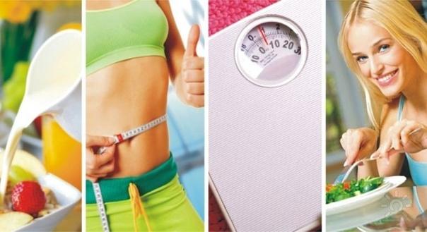 Курс Похудения В Минске. Купить Dietbalance (ДиетБаланс) - средство для похудения в Минске