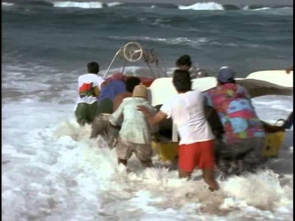 44 1996 Южная Африка Святилище жизни Подводная одиссея команды Кусто
