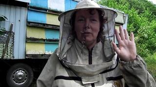 Правильный мёд какой должен быть?