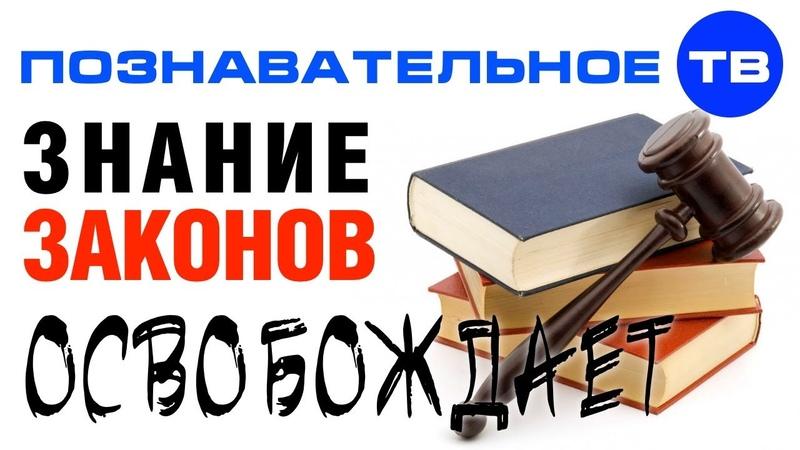 Знание законов ОСВОБОЖДАЕТ от отвественности Познавательное ТВ Евгений Пупырин