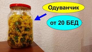 Настойка цветков одуванчика на водке от 20 недугов и болезней Как сделать Настойку цветов ОДУВАНЧИКА