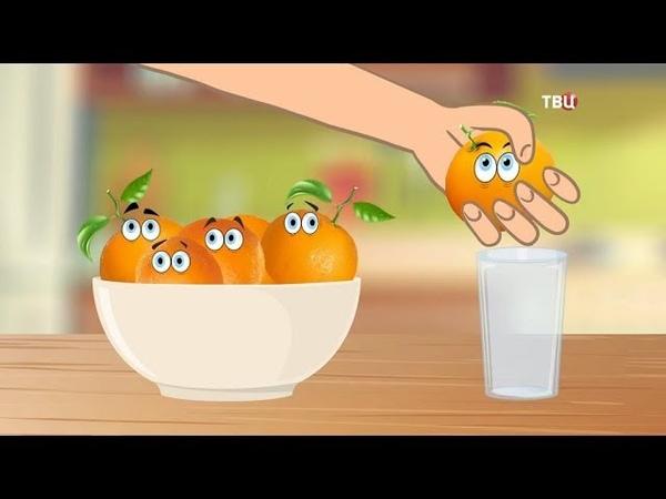 Сок апельсиновый Естественный отбор