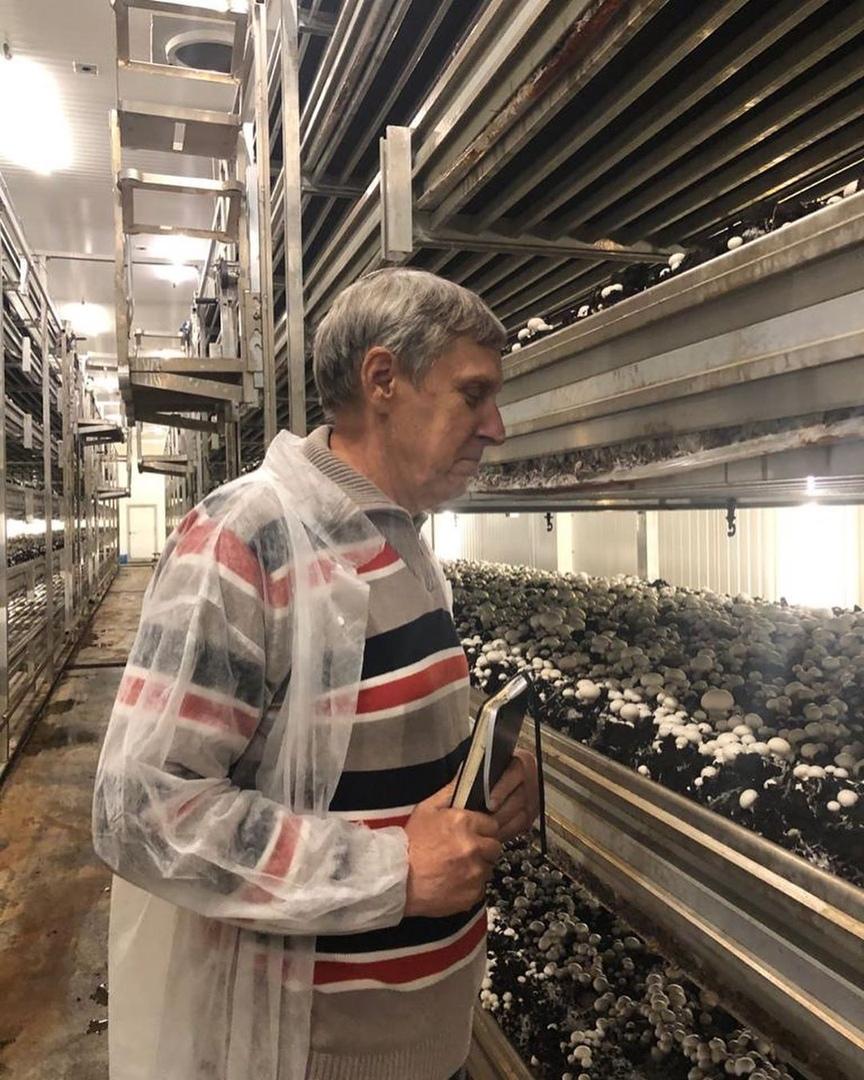 С Петровским грибным комбинатом будет сотрудничать известный учёный агроном Александр Царёв