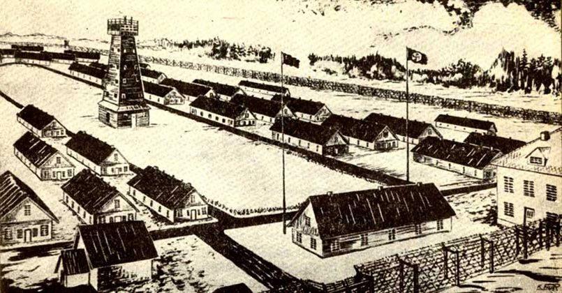 В Саласпилсском концлагере у детей было выкачено 3,5 тыс. литров крови. За это дети в сутки получали 100 г хлеба и 1,5 л жидкости., изображение №1