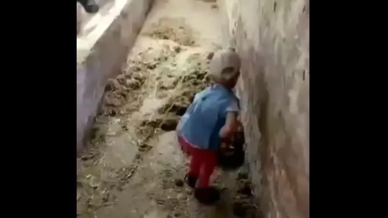 Маленькая работница