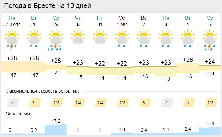 Дожди, грозы и жара. Все о погоде в Бресте на неделе