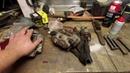 Трудовые будни мастерской 7. Замена подвески на 2410, котята мейн кун .