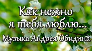 Как нежно я тебя люблю... Музыка - Андрей Обидин (Волшеб-Ник) Видео - Сергей Зимин (Кудес-Ник)