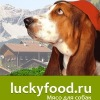 Мясо для собак  Натуральный корм  Лакифуд