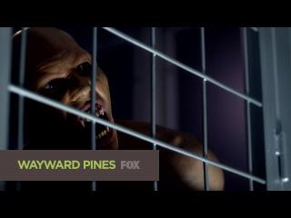 Первый сник-пик седьмой серии второго сезона сериала Wayward Pines (Уэйуорд Пайнс / Сосны)