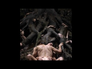 Evil Nature: Woman in Lars von Trier's Antichrist