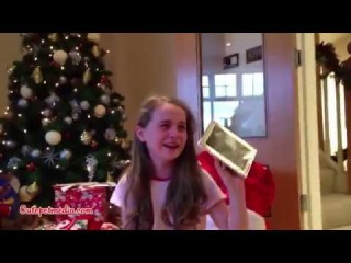 Christmas Puppy Surprise Compilation 2014