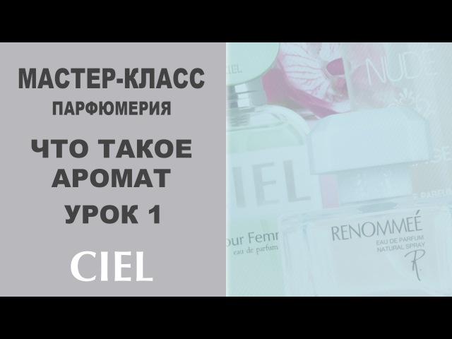 Что такое аромат Парфюмерия Базовый курс Урок 1 CIEL