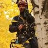 Спил деревьев в Рязани