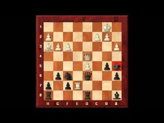 Знаменитые партии 7. Каспаров - Топалов. Выбираем правильный ход. Задания 16-21