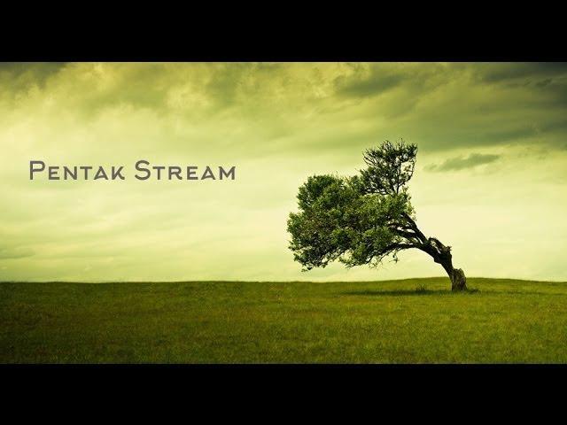 Pentak Stream. Gothic II Night of the Raven Возвращение 2.0 (The Returning 2.0). Часть 29