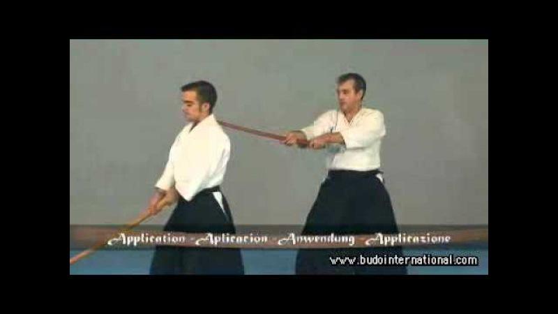 AIkido. Basic Bokken. Jose L. Isidro