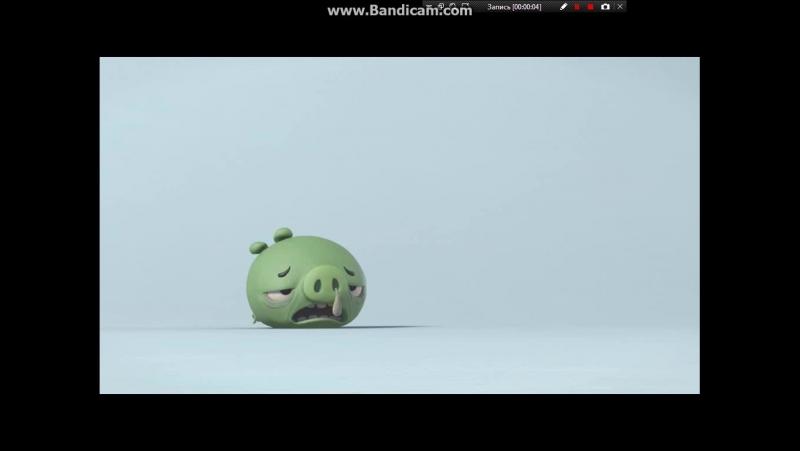 Истории Свинок 1 сезон 22 серия Лекарство