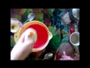 Как сделать коржи на торт красный бархат упрощенный вариант