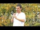 Вадим Брыков - Вальс (Е Дога)