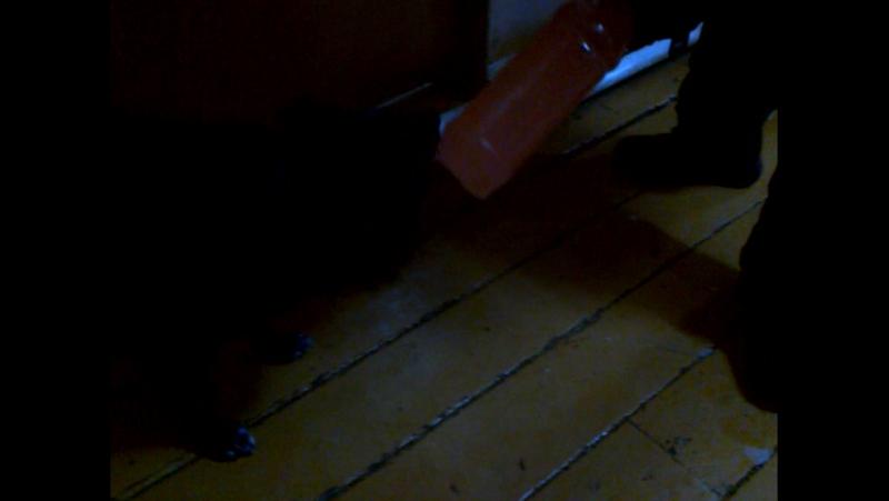 Собака просит блазёр З