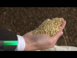 Россельхозбанк предоставил кредит торгово-производственной компании на закупку сырья у отечественных производителей