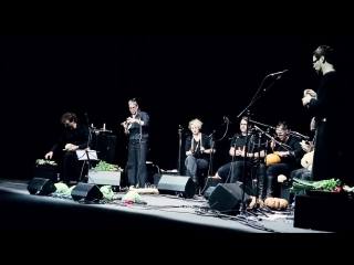 The vegetable orchestra (live)