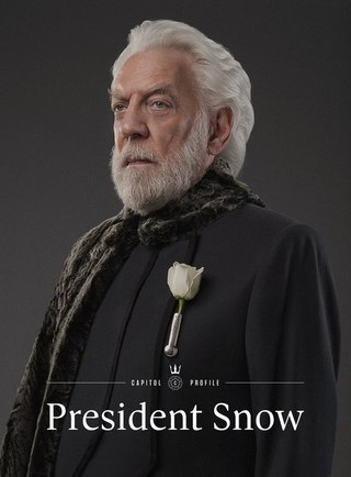 president snow meme - HD786×1200