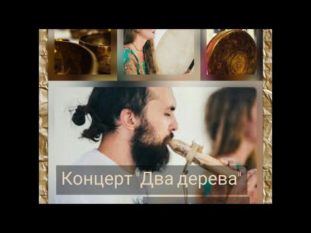 Медитативная музыка   Этно-транс проект Два Дерева   Древние инструменты