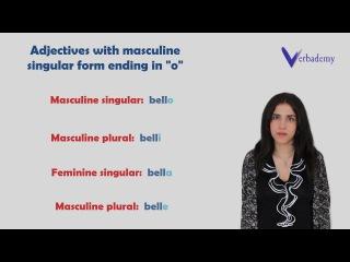 Learn Italian language online-Lesson 11:Adjectives-Grammatica Italiana