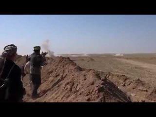 Ирак.+18. Иракские ополченцы отразили атаку бармалеев ДАИШ под городом Талль-Афар...