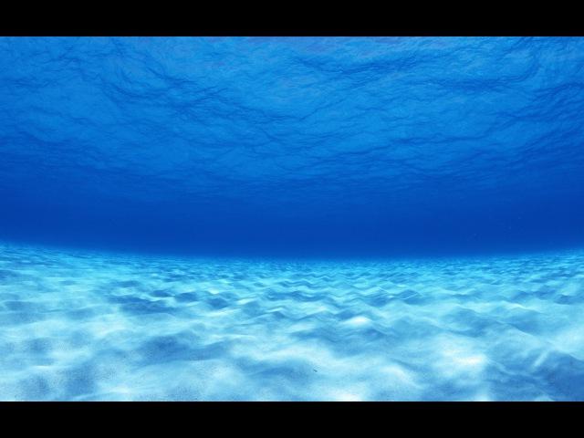 BBC Бермудский треугольник Тайна глубин океана
