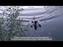 Самобеглый эхолот - первый запуск. Sonar boat home made - maiden flight.