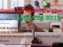 Ultimate Solution via 1 866 224 8319 Gamil Technical Support