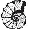 Психология, философия, арт, метафорические карты