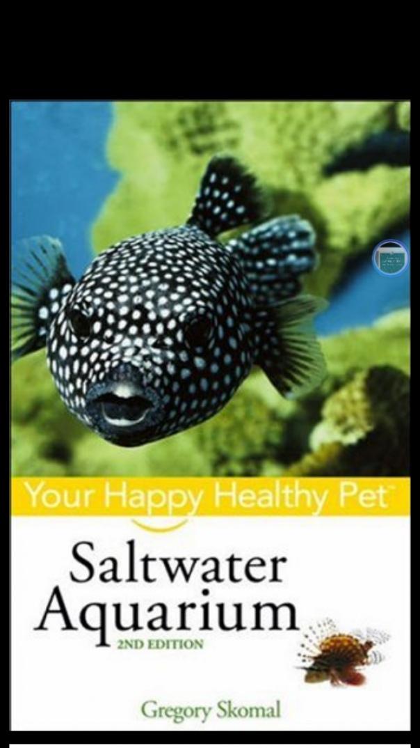 Saltwater Aquarium Your Happy healthy pet