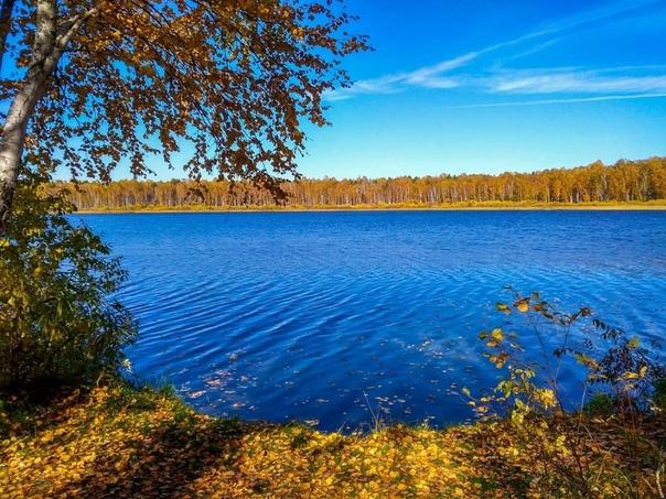 озеро данилово омская область фото восприятие