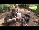 Дикая жизнь с Тимом Фолкнером The Wild Life of Tim Faulkner 2013 23